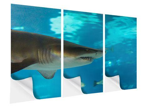 Klebeposter 3-teilig Der Haifisch