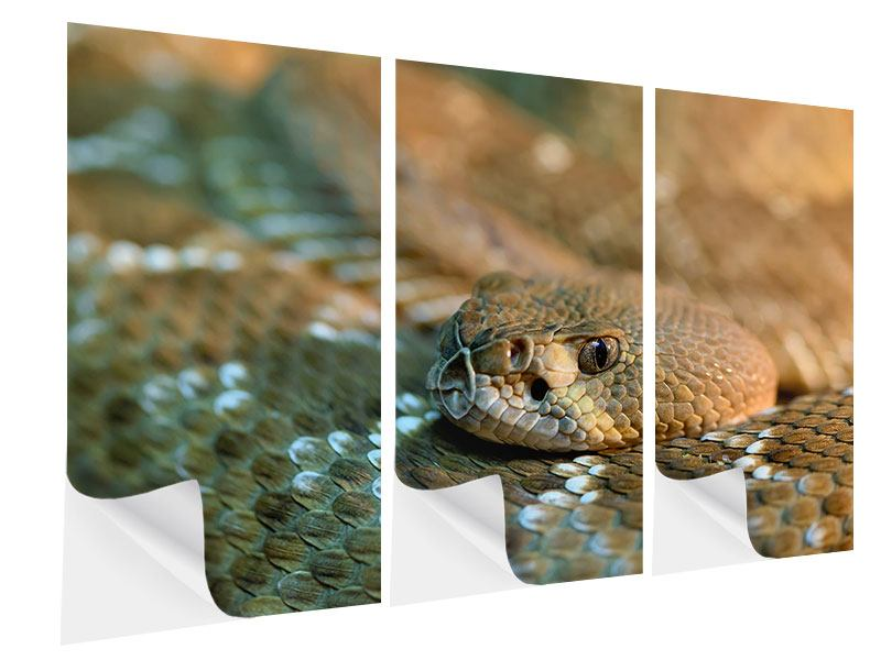 Klebeposter 3-teilig Viper