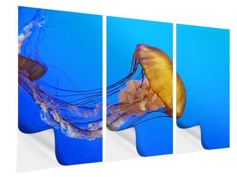 Klebeposter 3-teilig Medusa