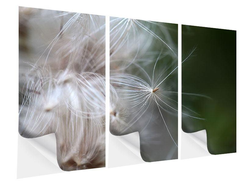 Klebeposter 3-teilig Close up Blütenfasern