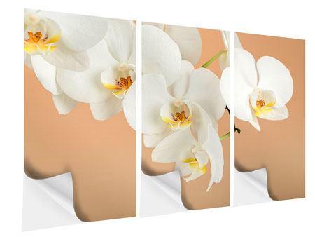 Klebeposter 3-teilig Weisse Orchideenblüten
