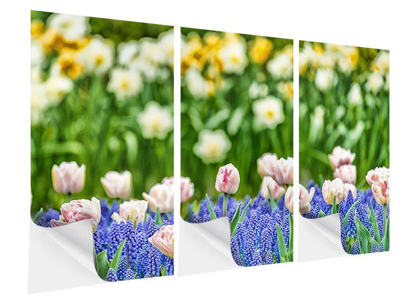 Klebeposter 3-teilig Ein Garten mit Tulpen