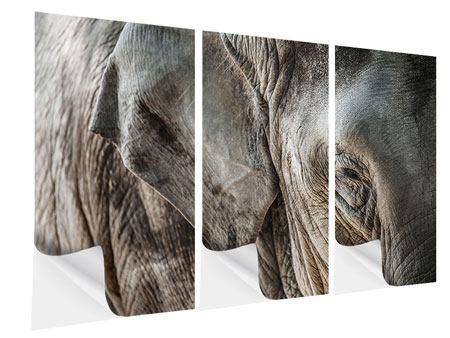 Klebeposter 3-teilig Close Up Elefant