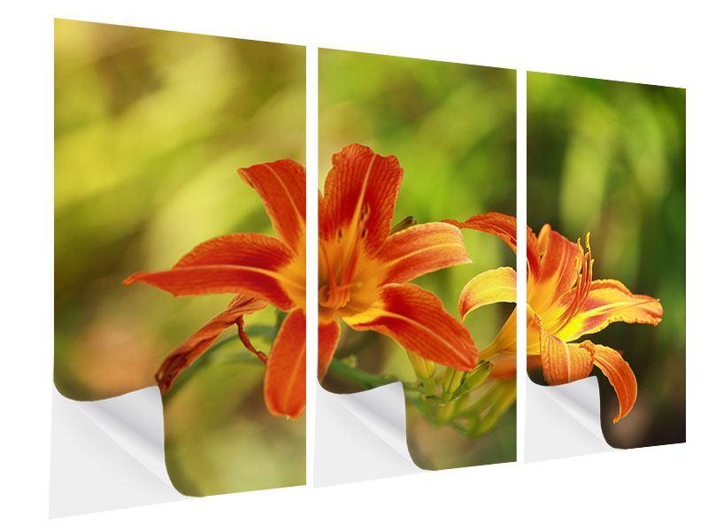 Klebeposter 3-teilig Natural Lilien