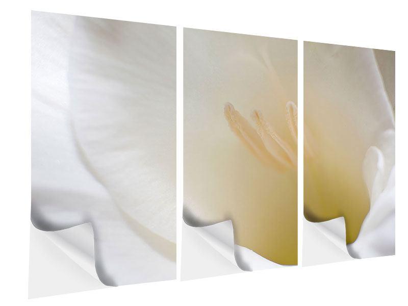 Klebeposter 3-teilig In einer Blüte
