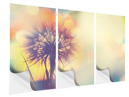 Klebeposter 3-teilig Die Pusteblume im Licht