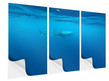 Klebeposter 3-teilig Der Walhai