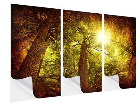 Klebeposter 3-teilig Cedar Baum