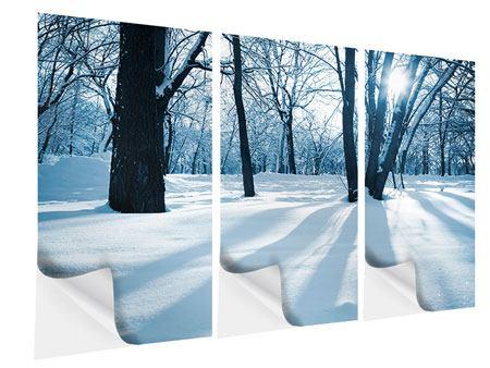 Klebeposter 3-teilig Der Wald ohne Spuren im Schnee