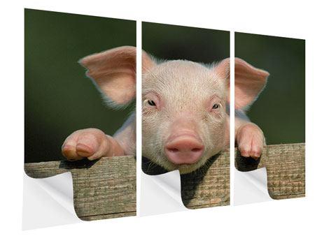 Klebeposter 3-teilig Schweinchen Namens Babe