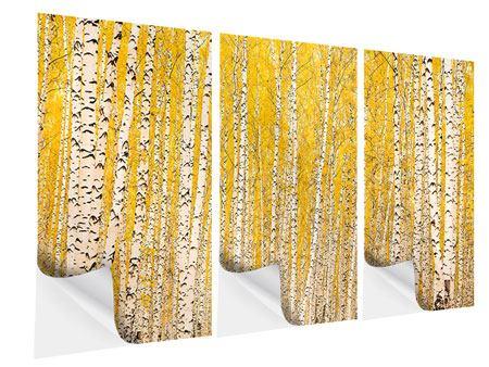Klebeposter 3-teilig Der Birkenwald im Herbst