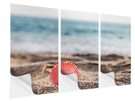 Klebeposter 3-teilig Die Muschel