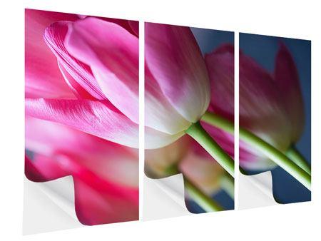 Klebeposter 3-teilig Makro Tulpen