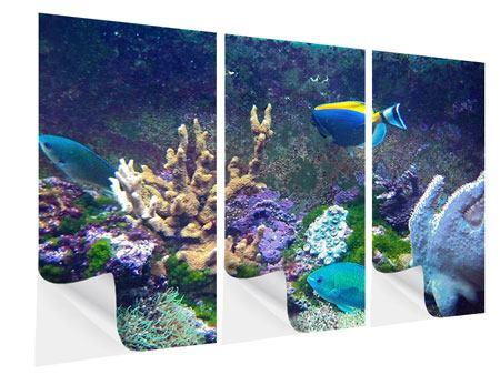 Klebeposter 3-teilig Fische