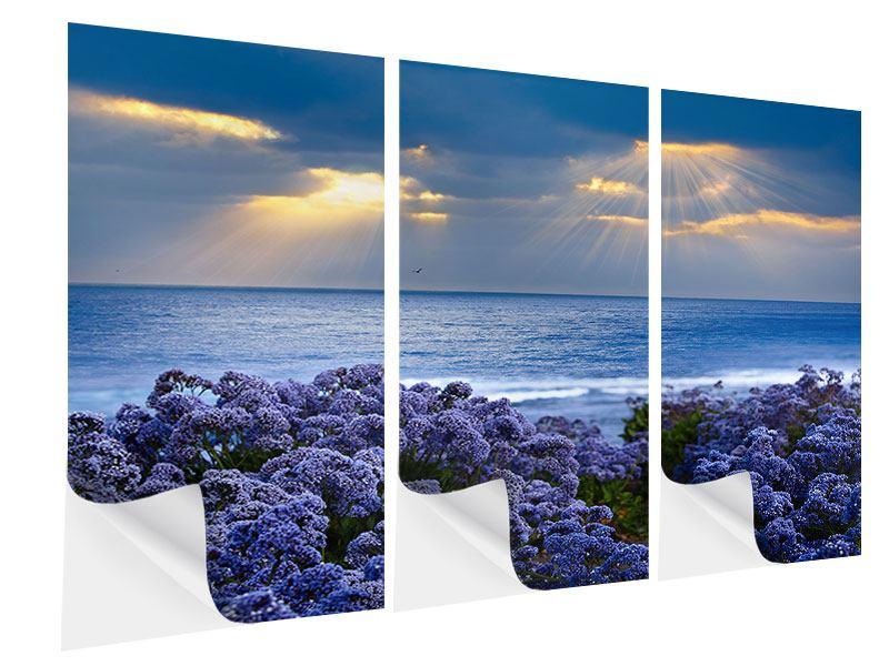 Klebeposter 3-teilig Der Lavendel und das Meer