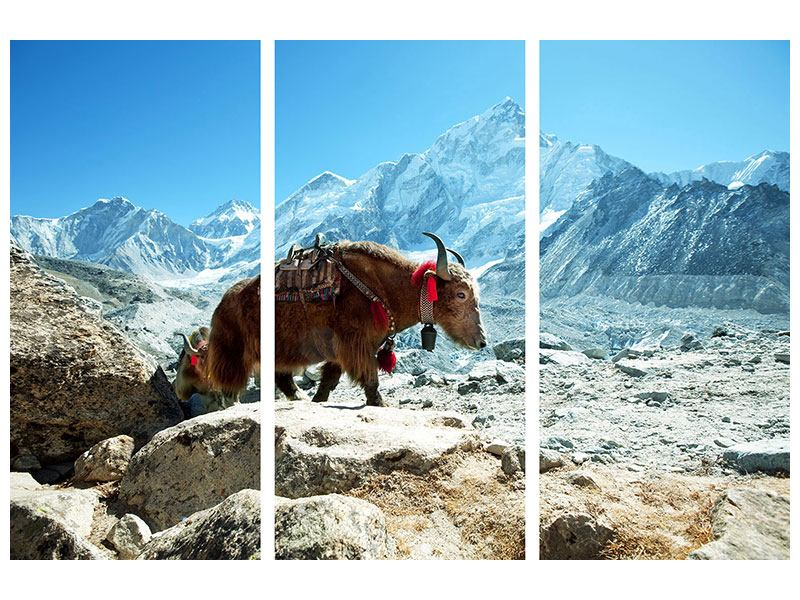 Klebeposter 3-teilig Das Himalaya-Gebirge