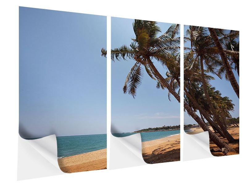 Klebeposter 3-teilig Palmblätter