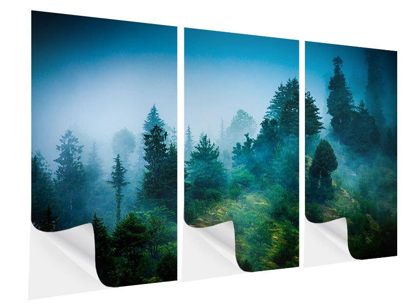 Klebeposter 3-teilig Geheimnisvoller Wald