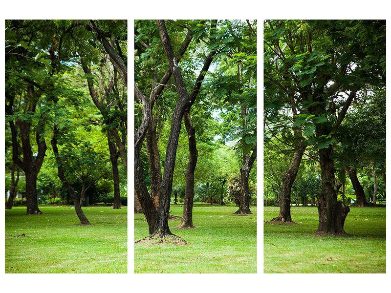 Klebeposter 3-teilig Kirschbaum-Garten