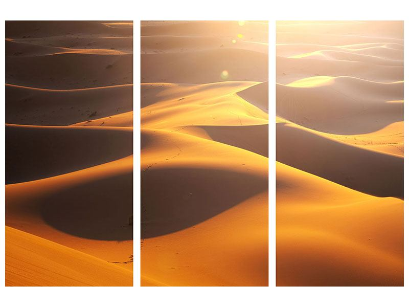 Klebeposter 3-teilig Wüstenwanderung