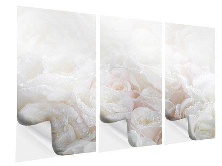 Klebeposter 3-teilig Weisse Rosen im Morgentau