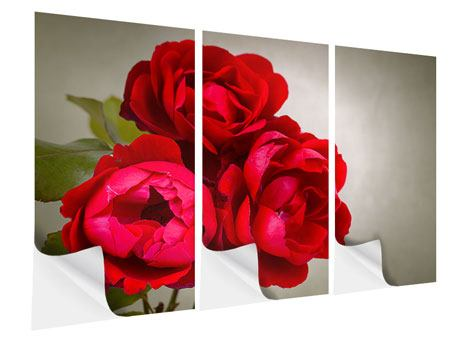 Klebeposter 3-teilig Drei rote Rosen