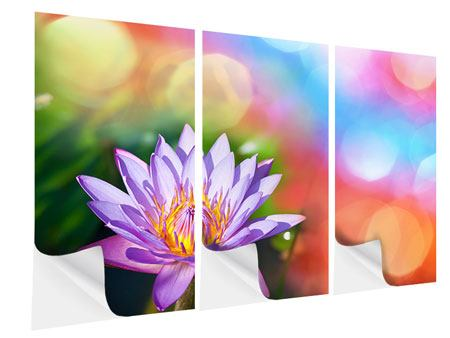 Klebeposter 3-teilig Colored Lotus