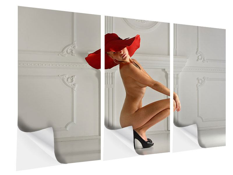 Klebeposter 3-teilig Nude-Diva