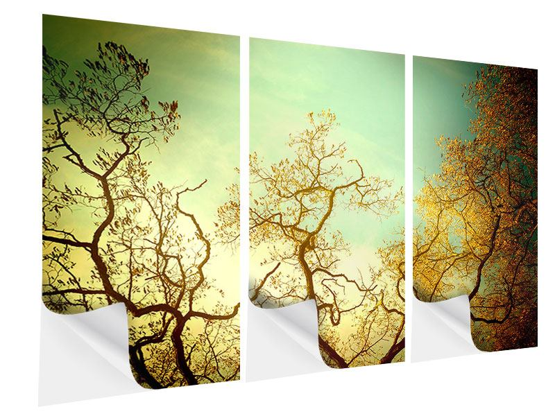 Klebeposter 3-teilig Bäume im Herbst