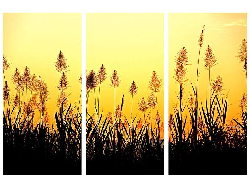 Klebeposter 3-teilig Die Blumen des Feldes