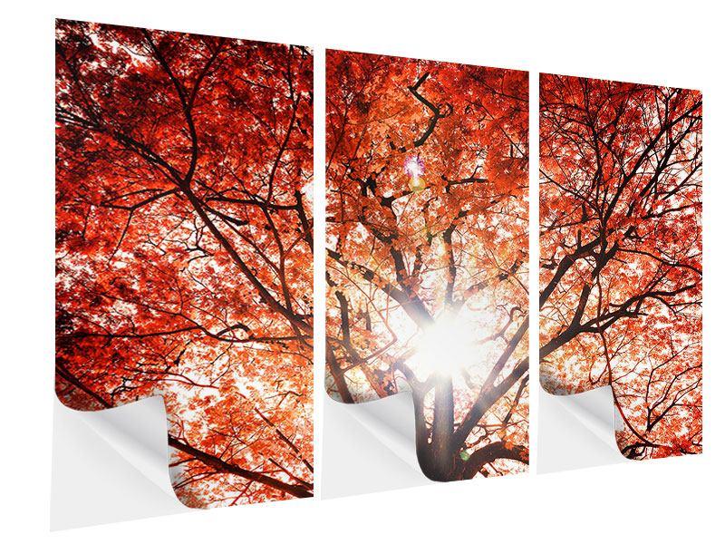 Klebeposter 3-teilig Herbstlicht