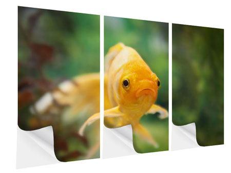 Klebeposter 3-teilig Der Fisch
