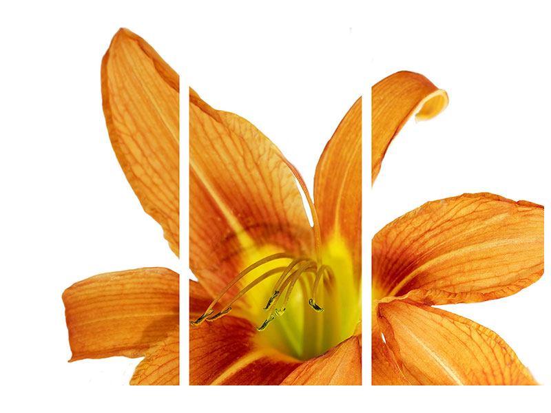 Klebeposter 3-teilig Die Tiger-Lilie