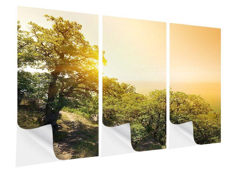 Klebeposter 3-teilig Sonnenuntergang in der Natur