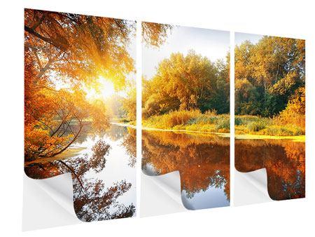 Klebeposter 3-teilig Waldspiegelung im Wasser