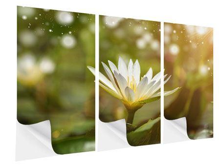Klebeposter 3-teilig Lilien-Lichtspiel
