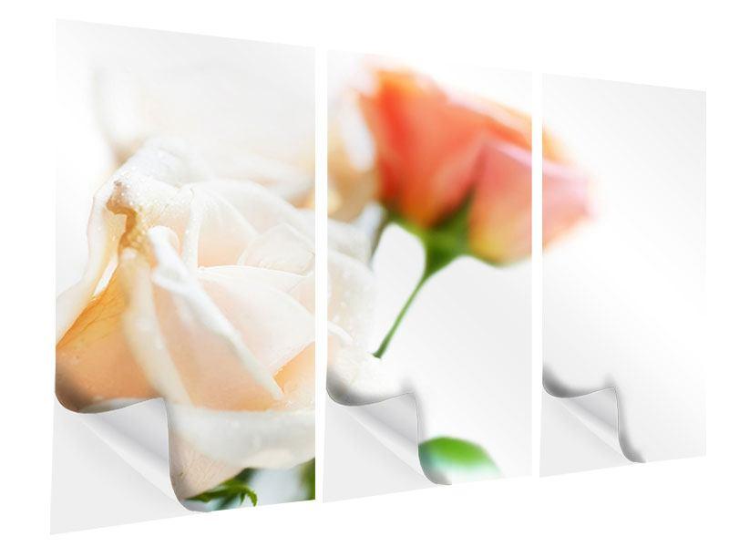 Klebeposter 3-teilig Rosenperspektive