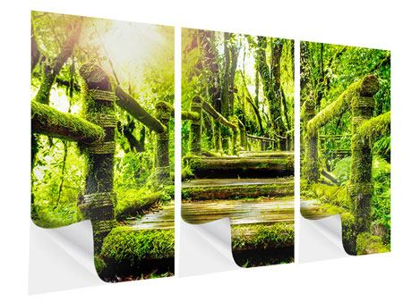 3 Piece Self-Adhesive Poster Moss
