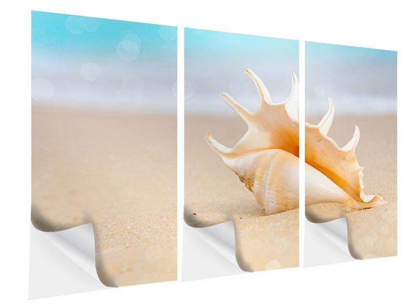 Klebeposter 3-teilig Die Muschel am Strand