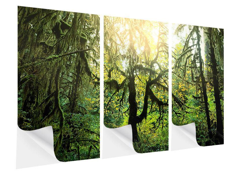Klebeposter 3-teilig Verträumter Wald