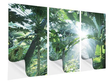 Klebeposter 3-teilig Dschungelstar