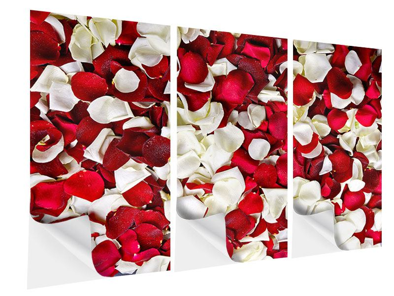 Klebeposter 3-teilig Rosenblätter