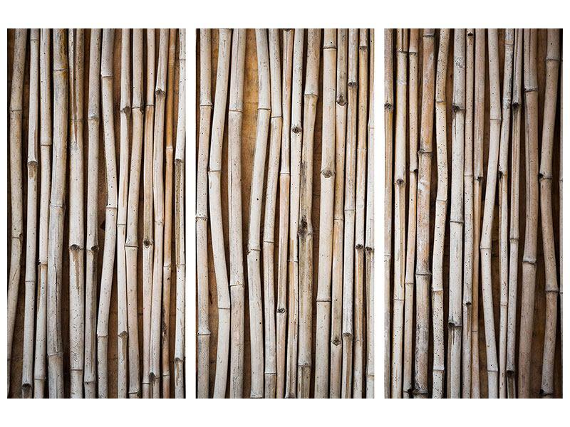 Klebeposter 3-teilig Getrocknete Bambusrohre