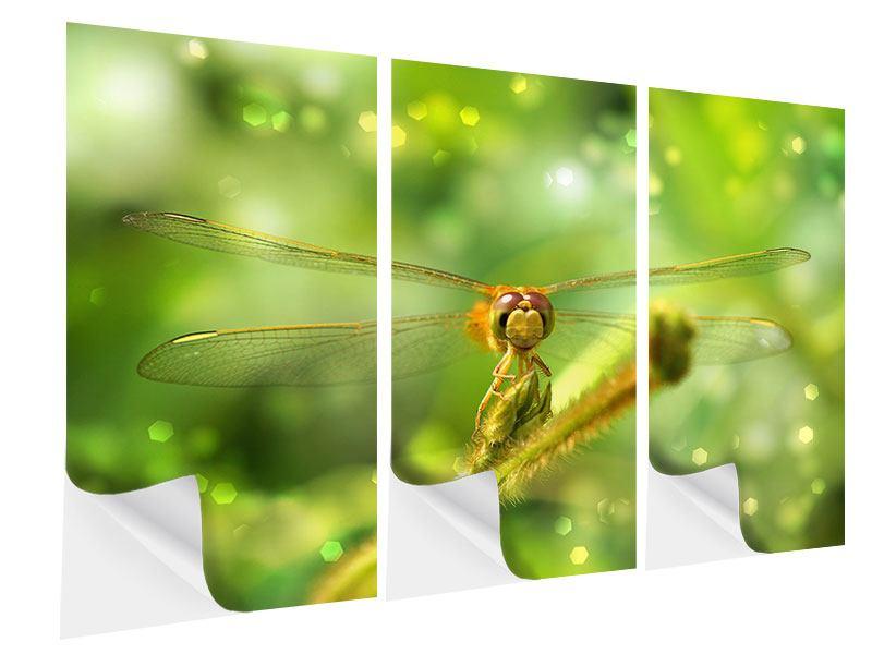 Klebeposter 3-teilig XXL-Libelle