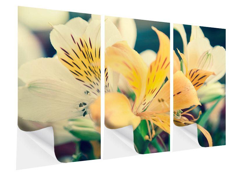 Klebeposter 3-teilig Tigerlilien