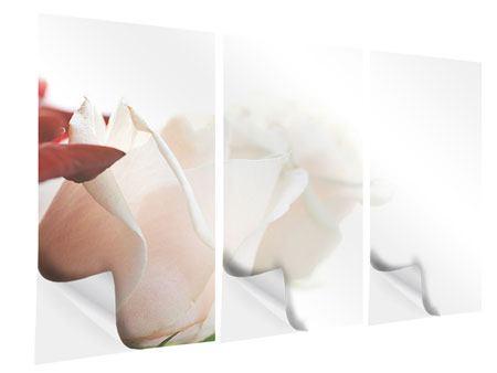 Klebeposter 3-teilig Herrliche Rosen