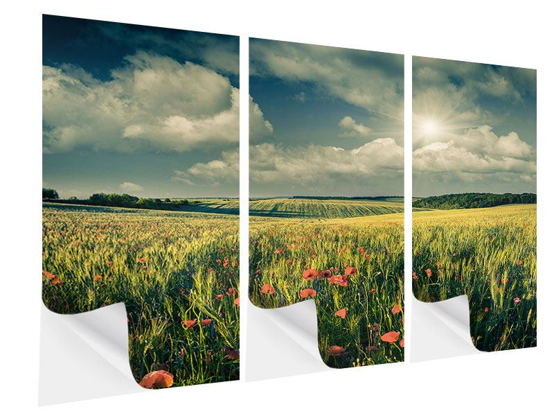 Klebeposter 3-teilig Der Mohn im Weizenfeld
