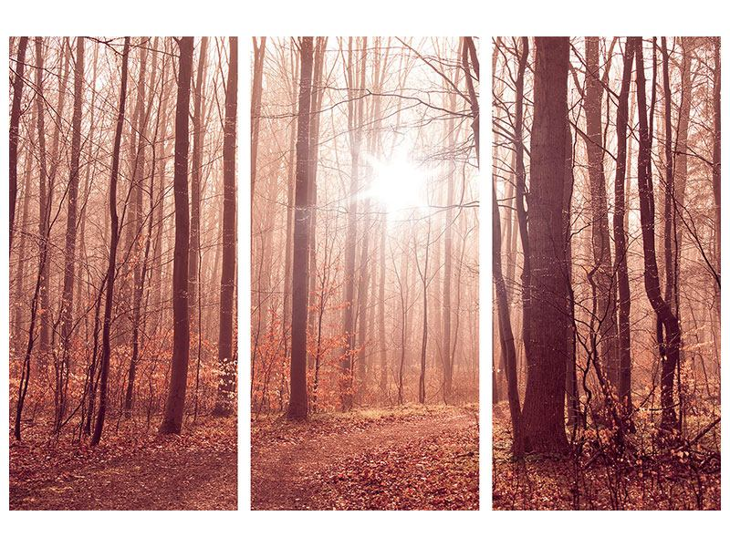 Klebeposter 3-teilig Sonnenuntergang im Herbstwald