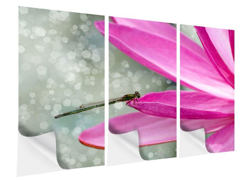 Klebeposter 3-teilig Libelle auf dem Seerosenblatt