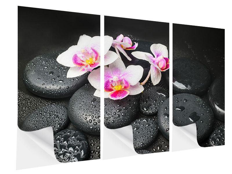Klebeposter 3-teilig Feng-Shui-Orchidee Zen